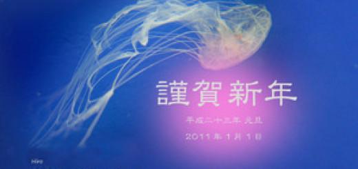 2011_jellyfish_s